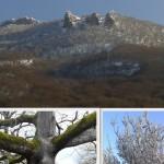parque natural de Urbasa Andia, parque natural de Aralar